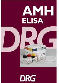 AMH elisa DRG
